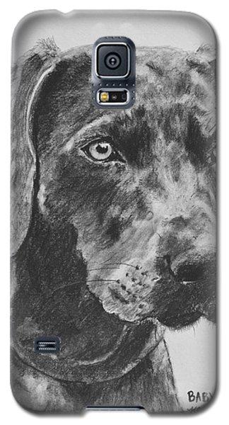 Weimaraner Drawn In Charcoal Galaxy S5 Case