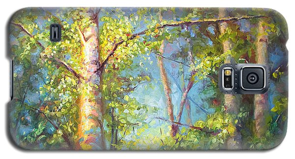 Welcome Home - Birch And Aspen Trees Galaxy S5 Case