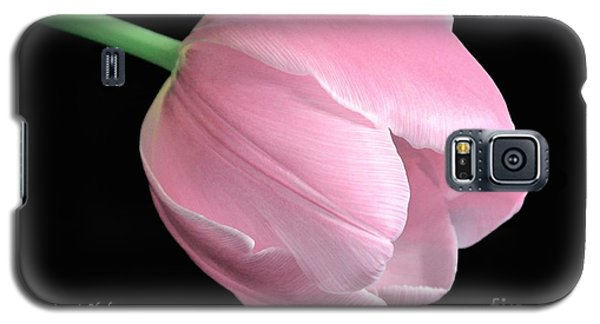 Welcome Spring In Pink Galaxy S5 Case