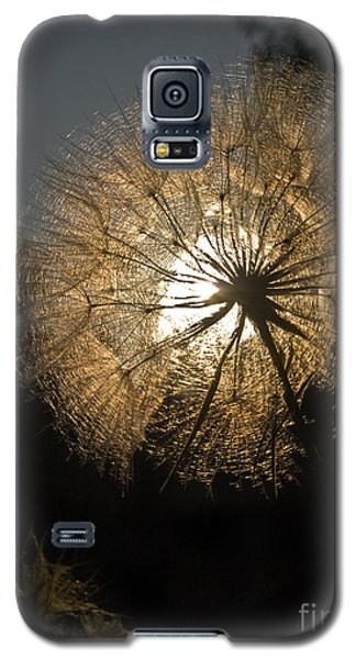 Welcome Summer  03 Galaxy S5 Case