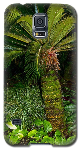 Welcome To The Tropics Galaxy S5 Case by Bill Woodstock