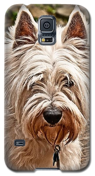 West Highland White Terrier Galaxy S5 Case