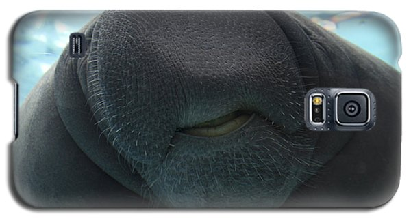 West Indian Manatee Smile Galaxy S5 Case