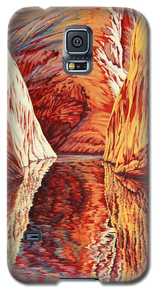 West Passage Galaxy S5 Case
