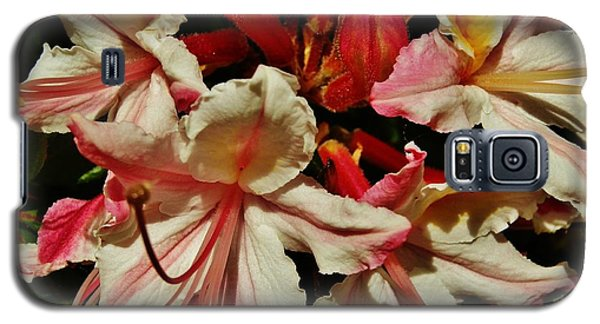 Galaxy S5 Case featuring the photograph Western Azalea by VLee Watson