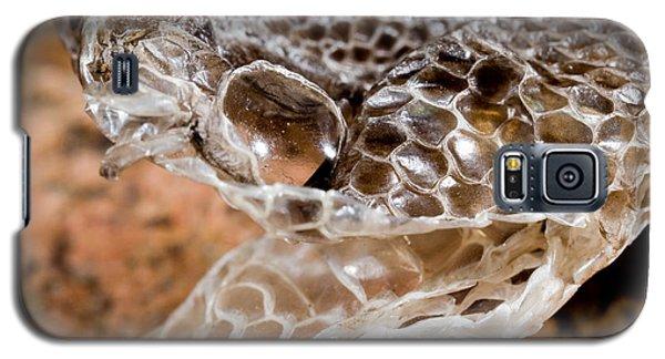 Western Diamondback Snake Skin Galaxy S5 Case by Gregory G. Dimijian, M.D.