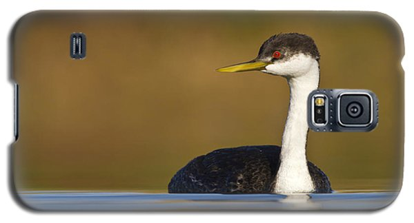 Galaxy S5 Case featuring the photograph Western Grebe On The Lake by Bryan Keil