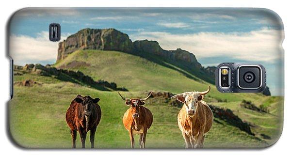 Western Longhorns Galaxy S5 Case