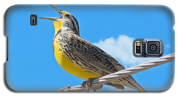 Galaxy S5 Case featuring the photograph Western Meadowlark Singing From A Wire by Stephen  Johnson