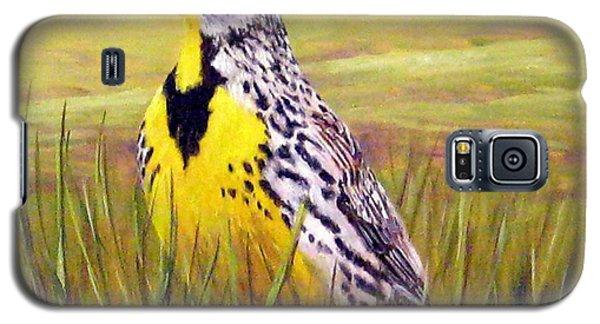 Western Meadowlark Galaxy S5 Case by Tom Chapman