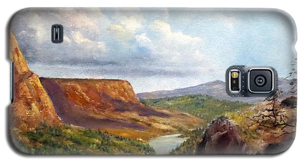 Galaxy S5 Case featuring the painting Western River Canyon by Lee Piper
