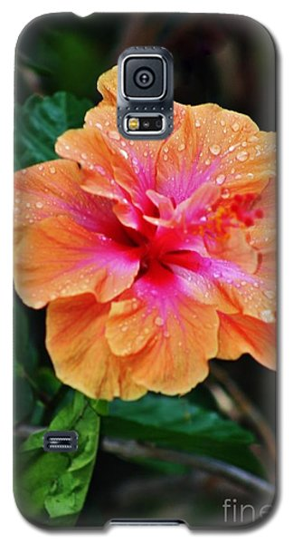 Galaxy S5 Case featuring the photograph Wet And Wonderful by Craig Wood