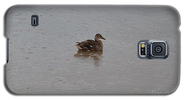 Wet Duck Galaxy S5 Case
