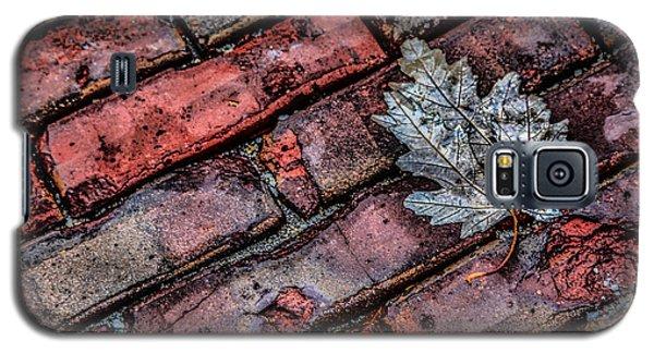 Wet Leaf Road Galaxy S5 Case