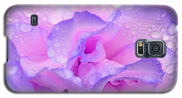 Galaxy S5 Case featuring the photograph Wet Rose In Pink And Violet by Nareeta Martin
