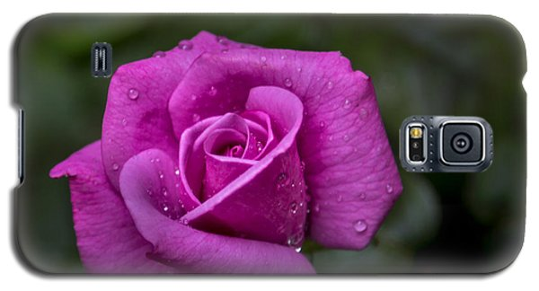 Wet Rose Galaxy S5 Case by Michael Waters