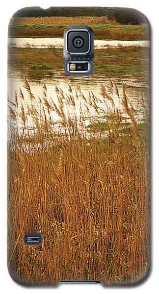 Galaxy S5 Case featuring the digital art Wetlands by David Davies