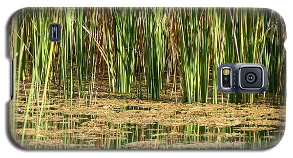 Galaxy S5 Case featuring the photograph Wetlands by Laurel Powell