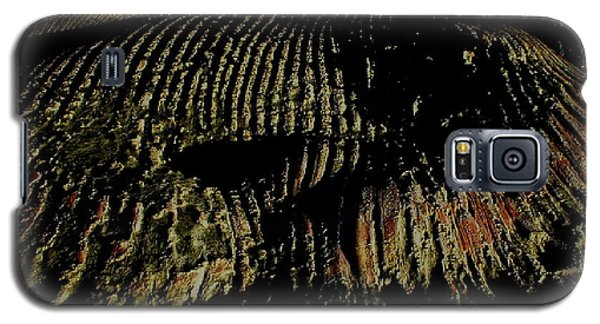 Whale On Stinson Beach 2 Galaxy S5 Case by Rachel Lowry