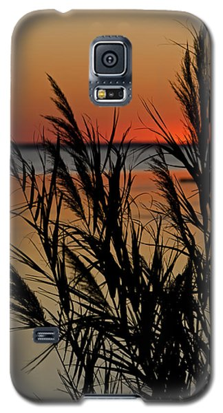 Whalehead Sunset Obx II Galaxy S5 Case