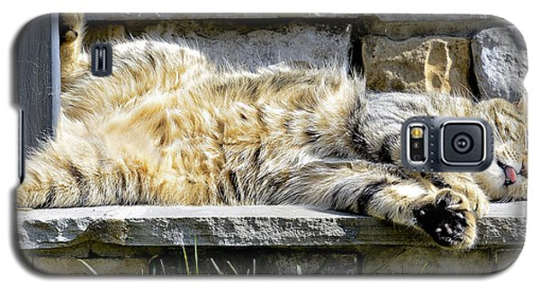 What A Day Galaxy S5 Case