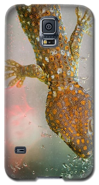 What If Tom Cruise Was A Gecko Galaxy S5 Case