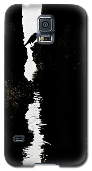 What Lies Beneath Galaxy S5 Case by Penny Meyers