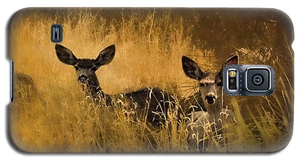 What'cha Lookin' At Galaxy S5 Case by Karen Slagle