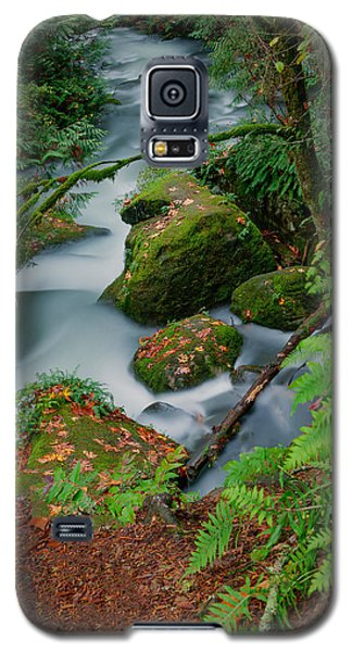 Whatcom Falls 1 Galaxy S5 Case