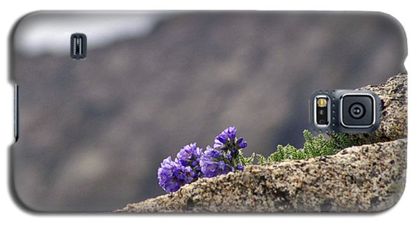 Whatever It Takes Galaxy S5 Case