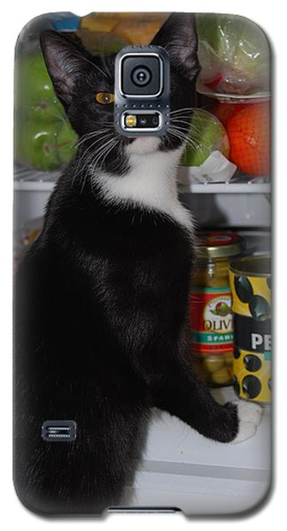 Galaxy S5 Case featuring the photograph What's For Dinner? by Ramona Whiteaker