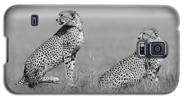 Cheetah Galaxy S5 Case - What's Going On Here Around? by Marco Pozzi