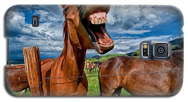 What's So Funny Galaxy S5 Case