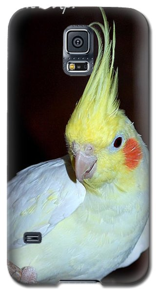 Galaxy S5 Case featuring the photograph What's Up? by Mary Beth Landis