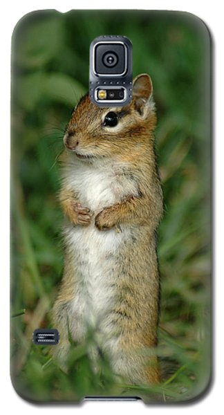 Galaxy S5 Case featuring the photograph Whats Up by Sandra Updyke