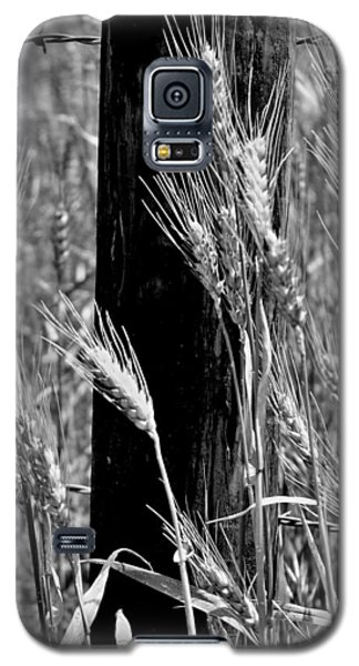 Galaxy S5 Case featuring the photograph Wheat And Fence Post by Ellen Tully