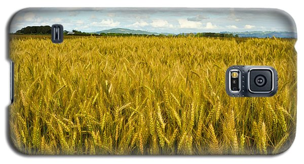 Galaxy S5 Case featuring the photograph Wheat Field by Crystal Hoeveler