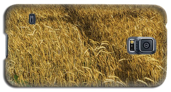 Galaxy S5 Case featuring the photograph Wheat With Cross  by Rob Graham