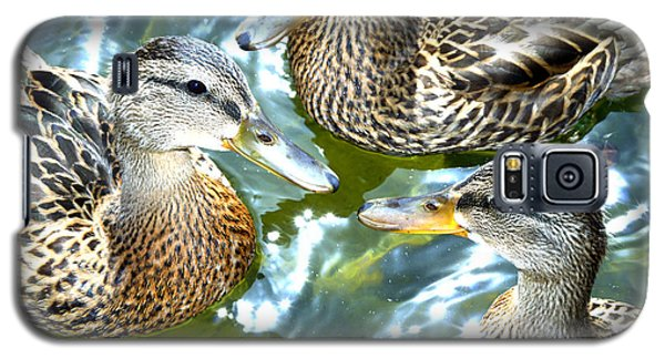 When Duck Bills Meet Galaxy S5 Case