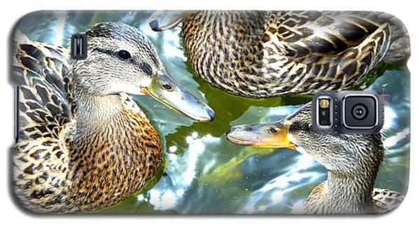 When Duck Bills Meet Galaxy S5 Case by Lesa Fine
