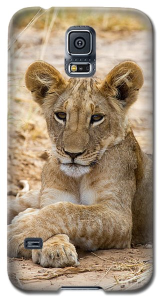 Galaxy S5 Case featuring the photograph When I Am King by Chris Scroggins