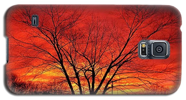When Morning Guilds The Skies Galaxy S5 Case by Christian Mattison