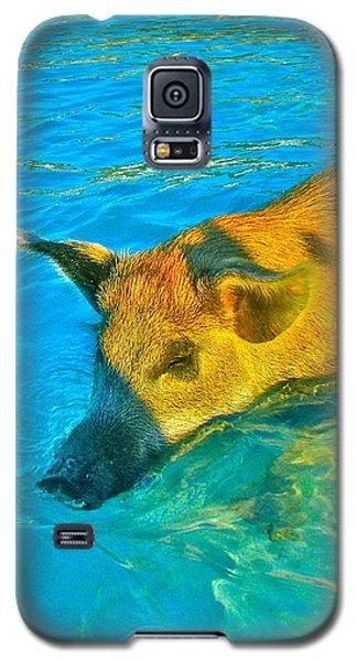 When Pigs Swim Galaxy S5 Case