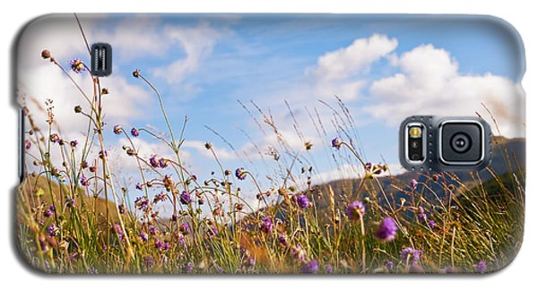 When The Sun Is Shining Everything Around Smiling Towards. Scotland Galaxy S5 Case