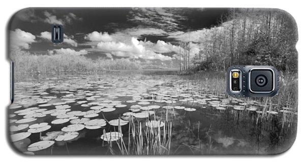 Where Angels Walk Galaxy S5 Case