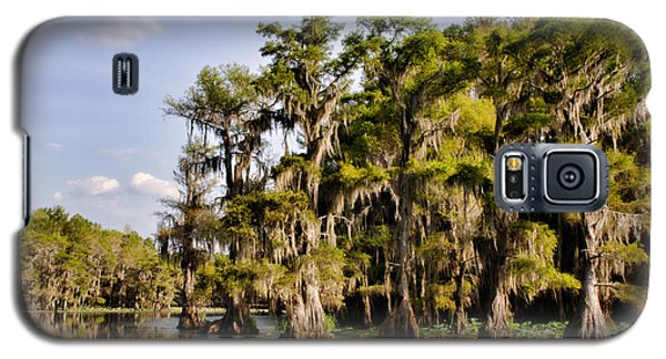 Where The Cypress Grows Galaxy S5 Case by Lana Trussell