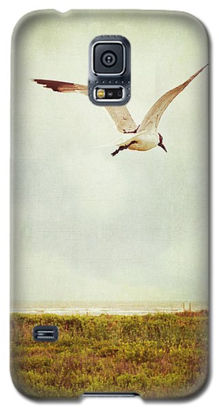 Where To Go? Galaxy S5 Case