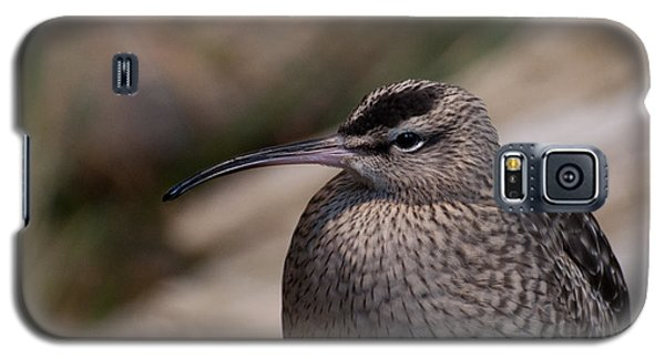 Galaxy S5 Case featuring the photograph Whimbrel by Bianca Nadeau