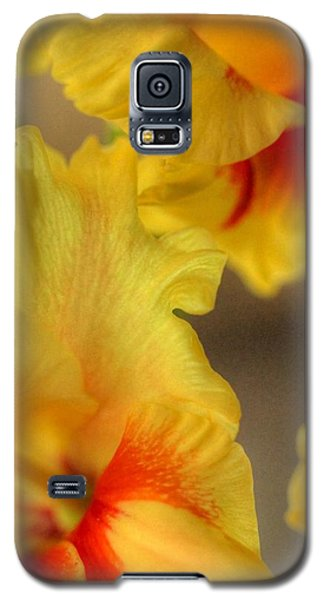 Whimsy Galaxy S5 Case by Deborah  Crew-Johnson