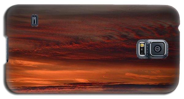 Whisp Galaxy S5 Case